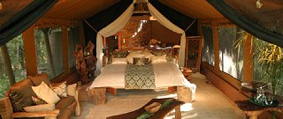 Mara Gypsy Luxury Safari Camp