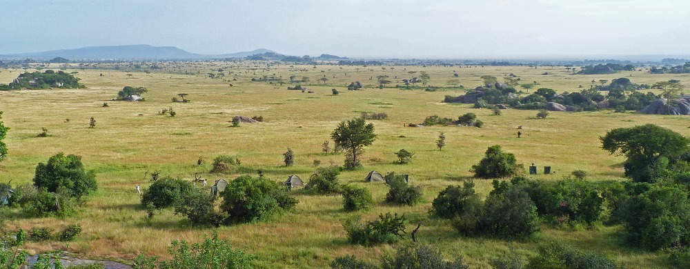 Camp i Serengeti National Park.